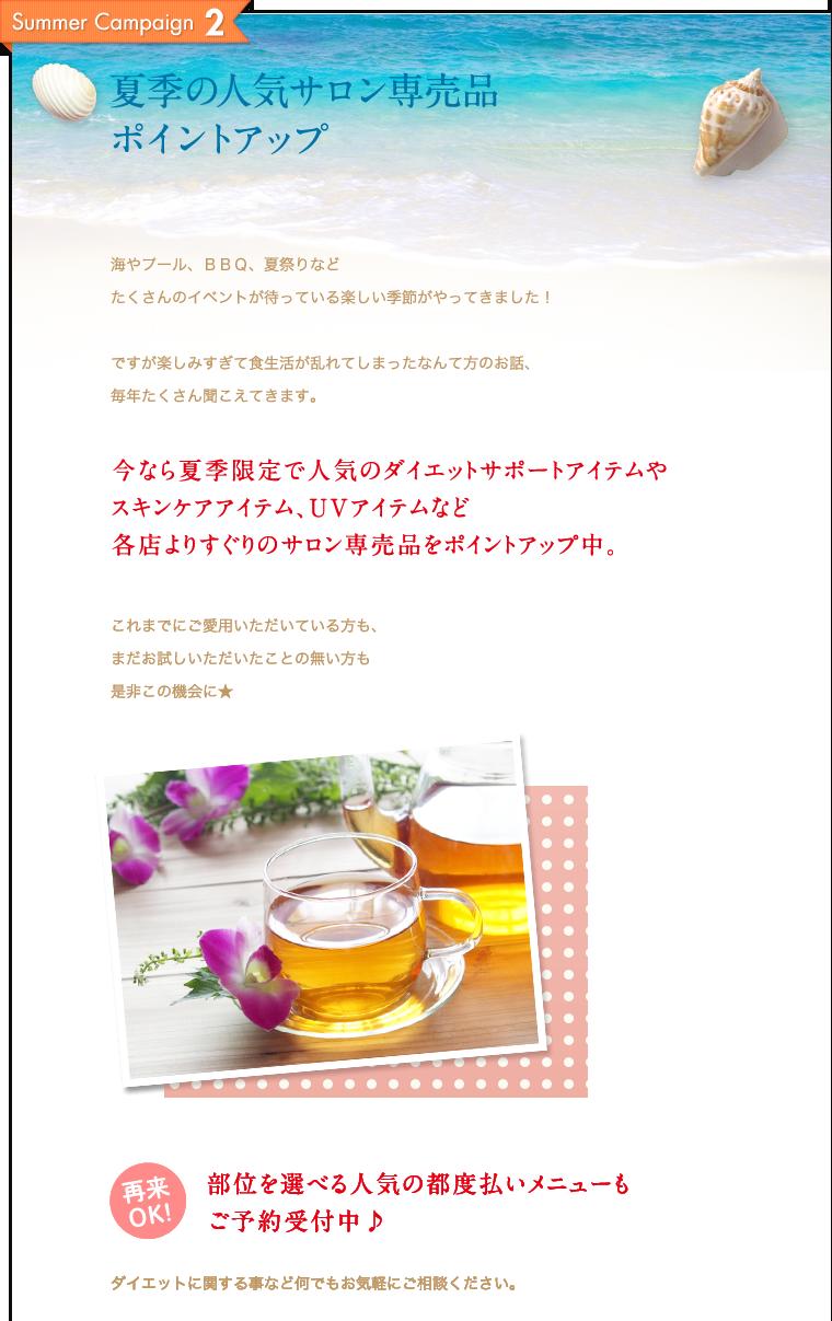 夏季の人気サロン専売品ポイントアップ