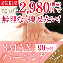 3MAX_bnr1
