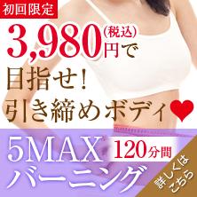 5MAX_bnr1